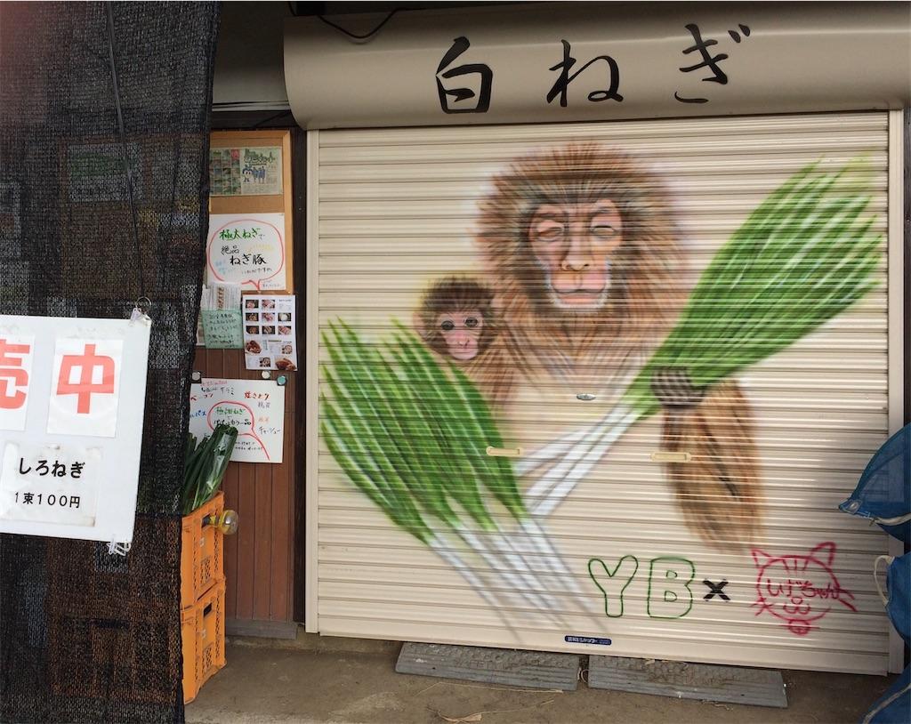 f:id:aki_tokitamago:20200101014119j:image