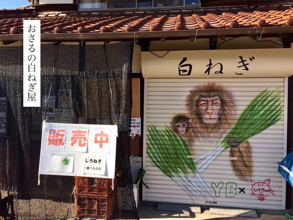 f:id:aki_tokitamago:20200121215904j:image