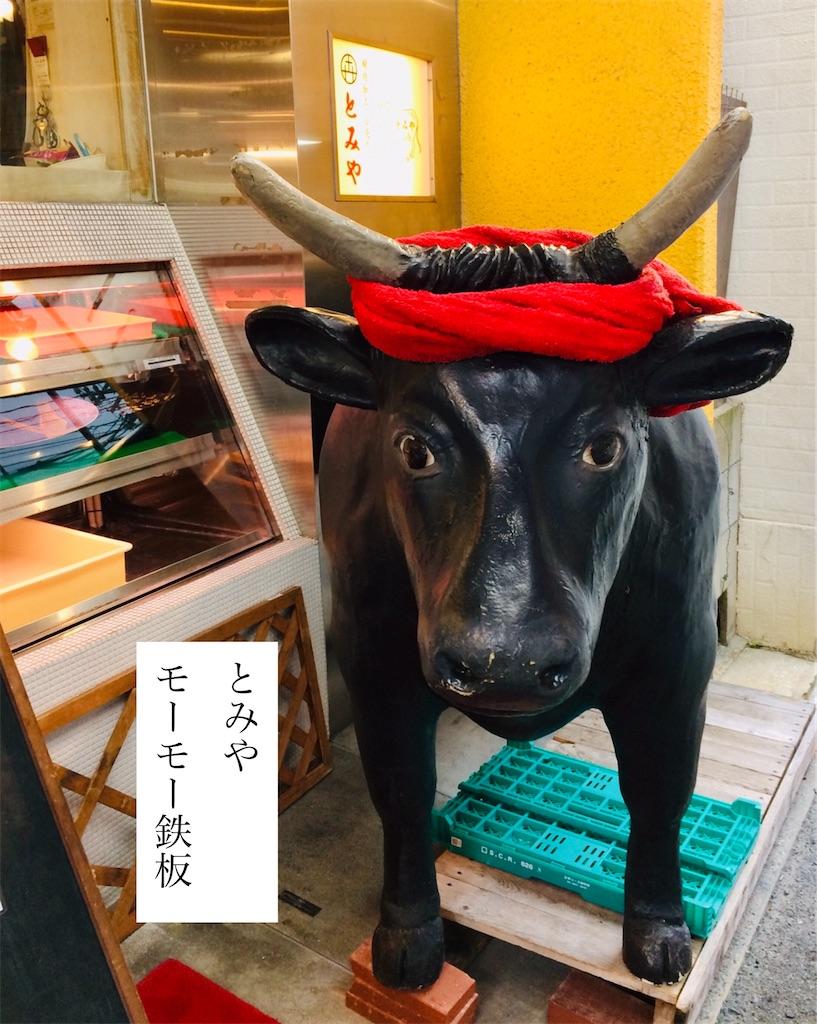 f:id:aki_tokitamago:20200202114451j:image