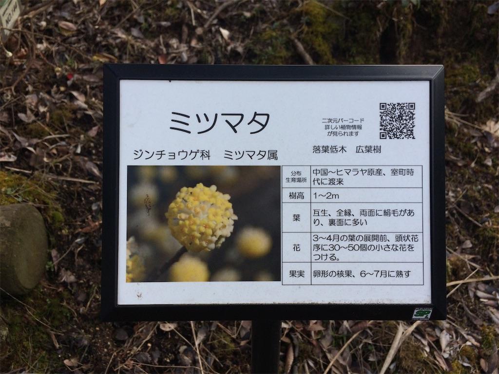 f:id:aki_tokitamago:20200309185526j:image