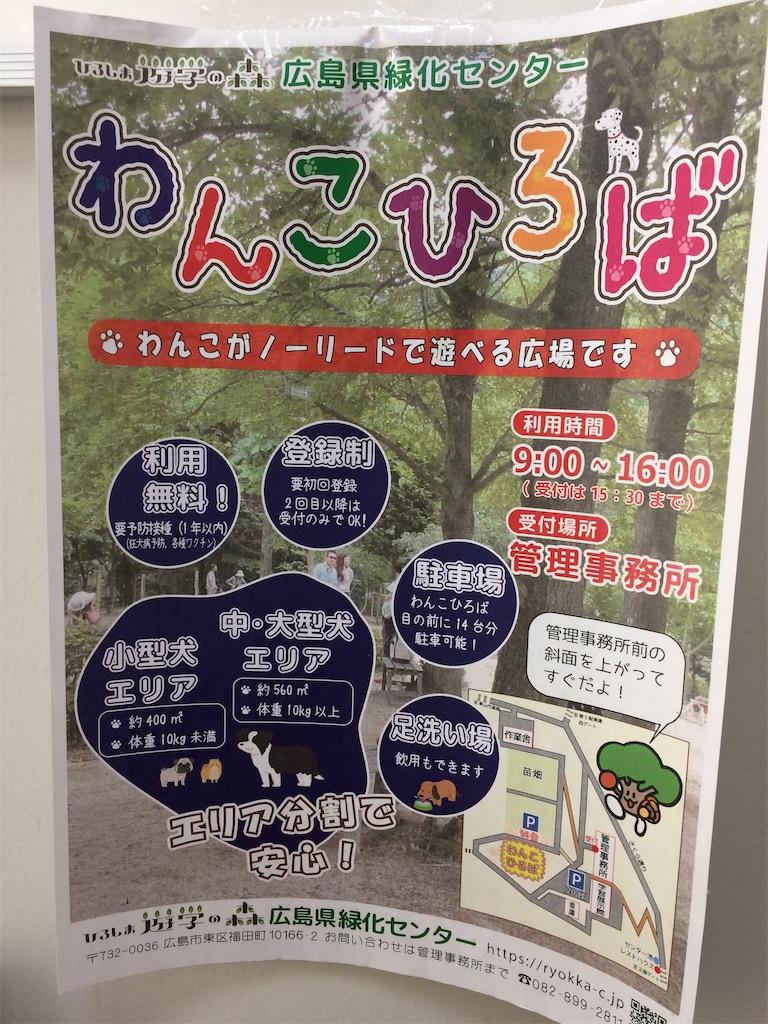f:id:aki_tokitamago:20200309190756j:image