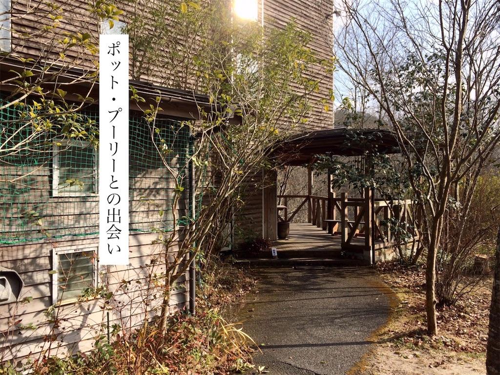 f:id:aki_tokitamago:20200324184554j:image