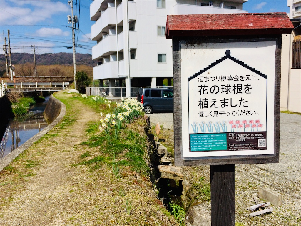 f:id:aki_tokitamago:20200330182934j:image
