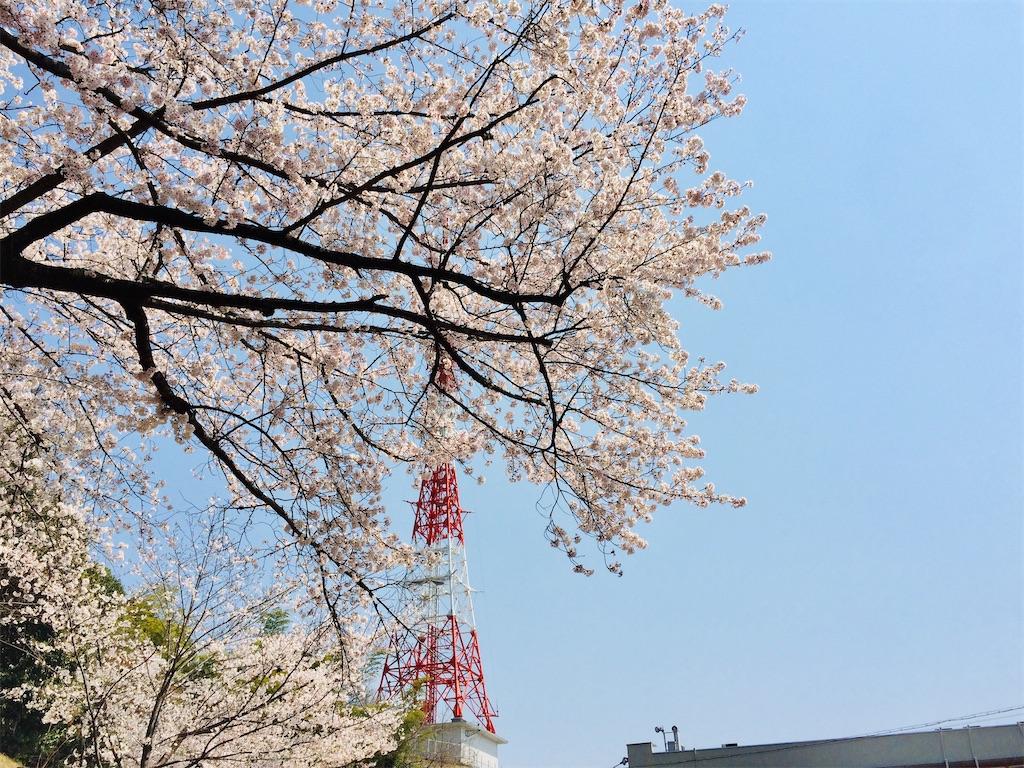 f:id:aki_tokitamago:20200404220122j:image