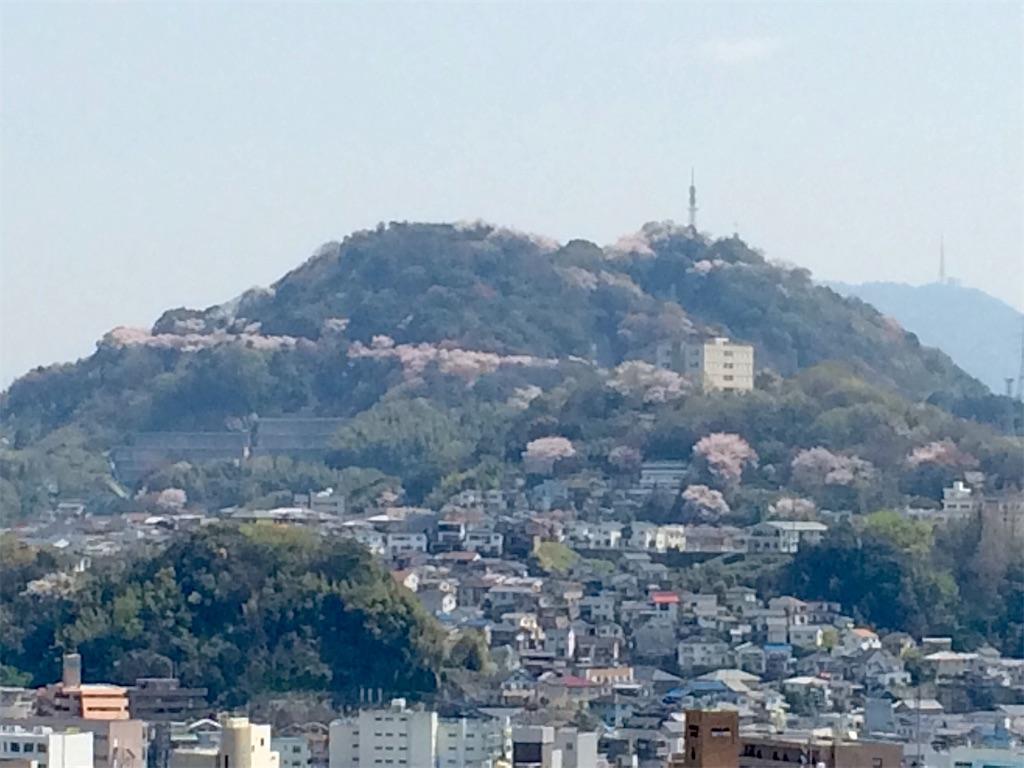 f:id:aki_tokitamago:20200404220142j:image