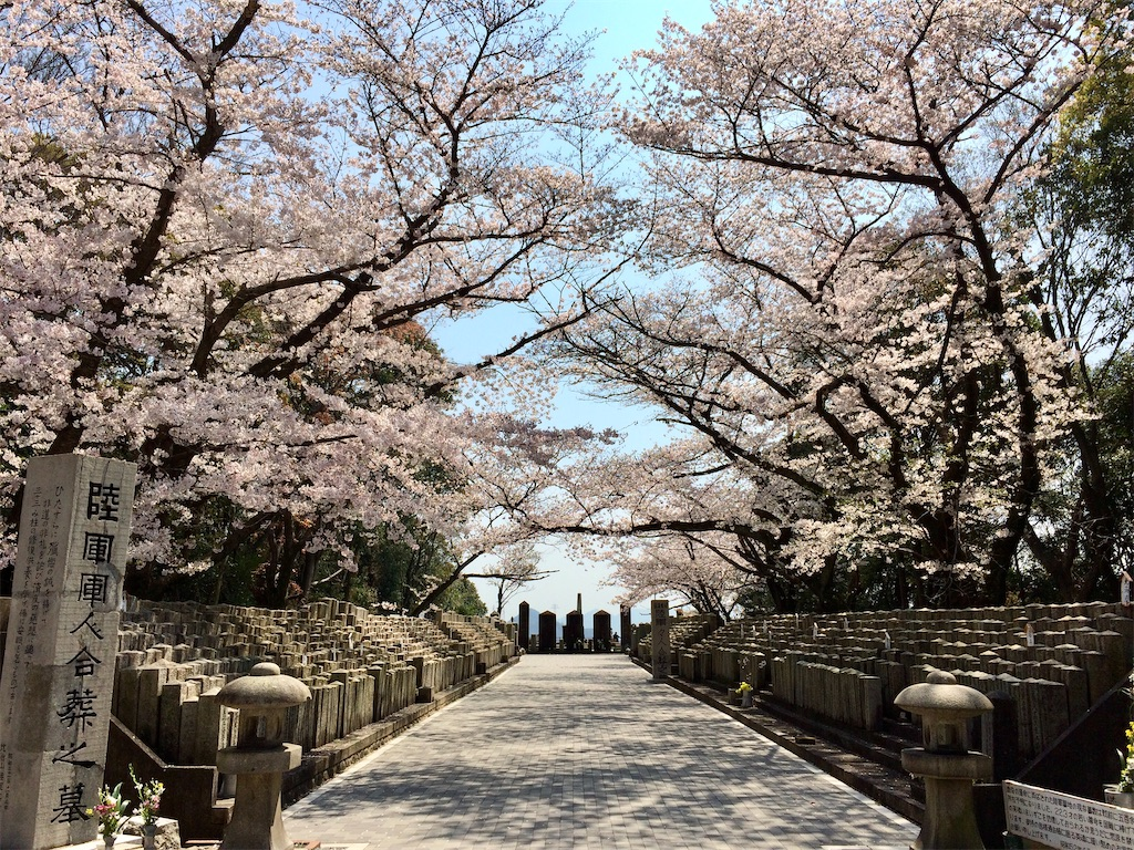 f:id:aki_tokitamago:20200404220226j:image