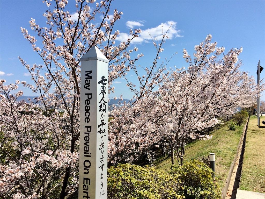 f:id:aki_tokitamago:20200411090828j:image