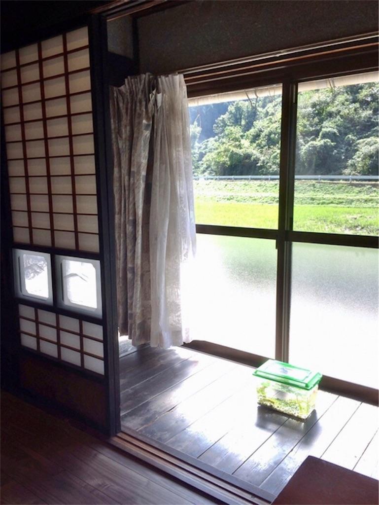 f:id:aki_tokitamago:20200522094030j:image