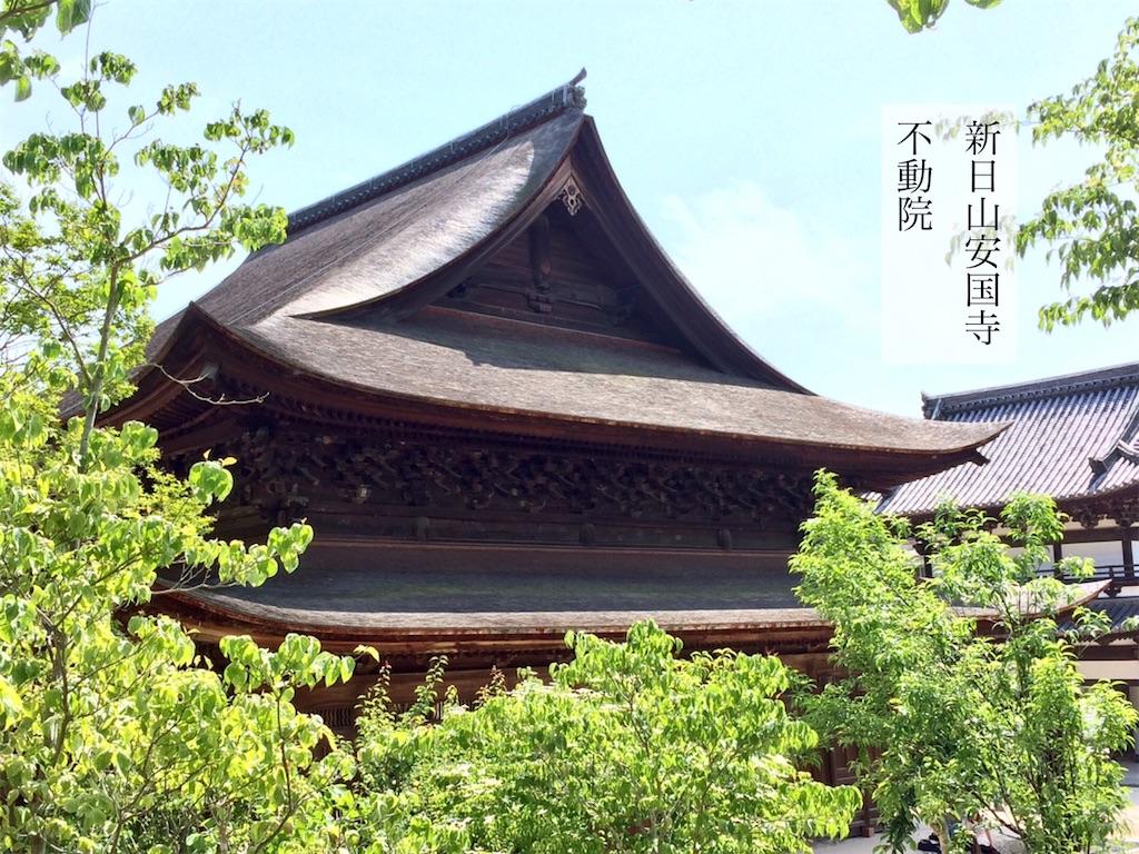 f:id:aki_tokitamago:20200607112305j:image