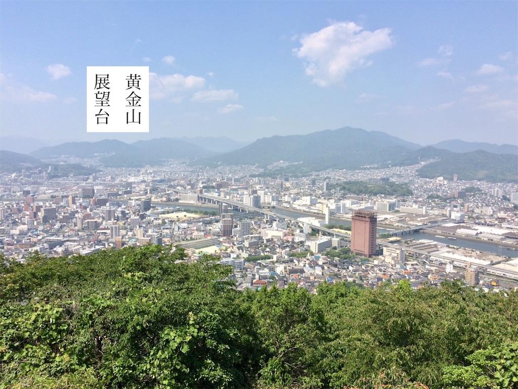 f:id:aki_tokitamago:20200610110108j:image
