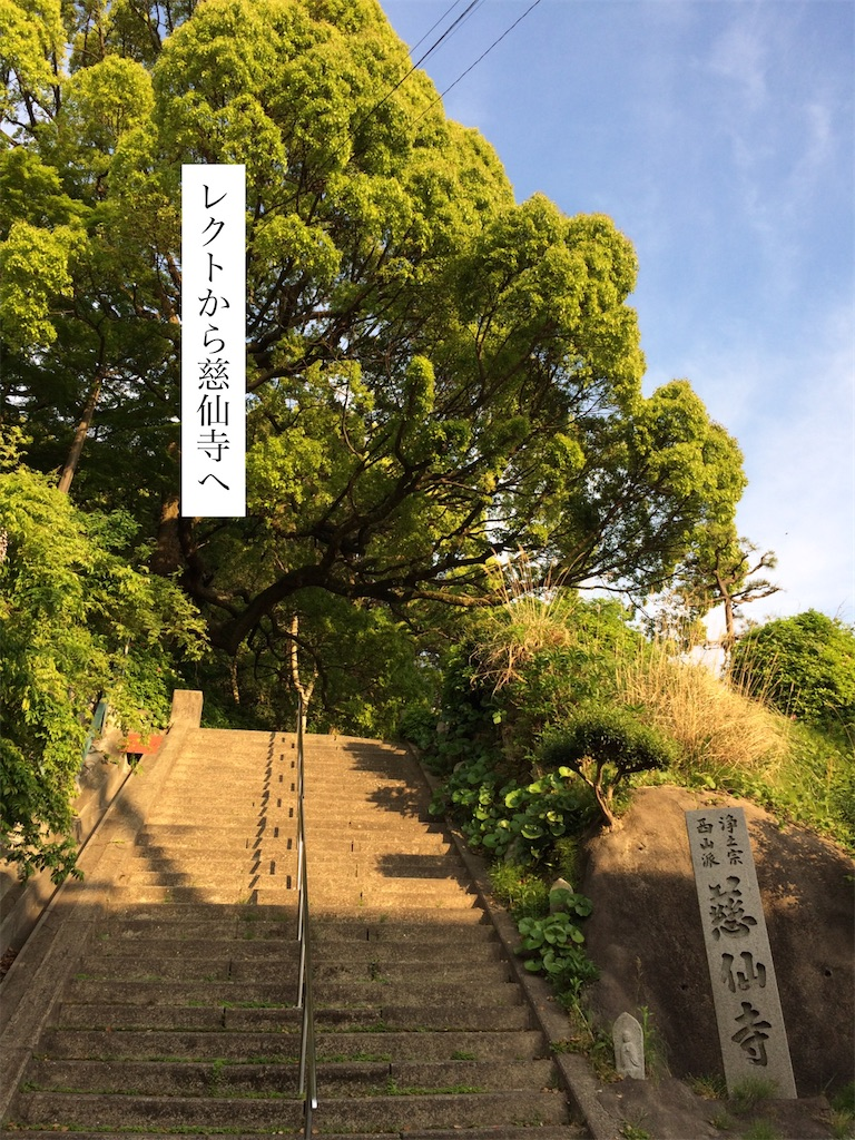 f:id:aki_tokitamago:20200621074754j:image