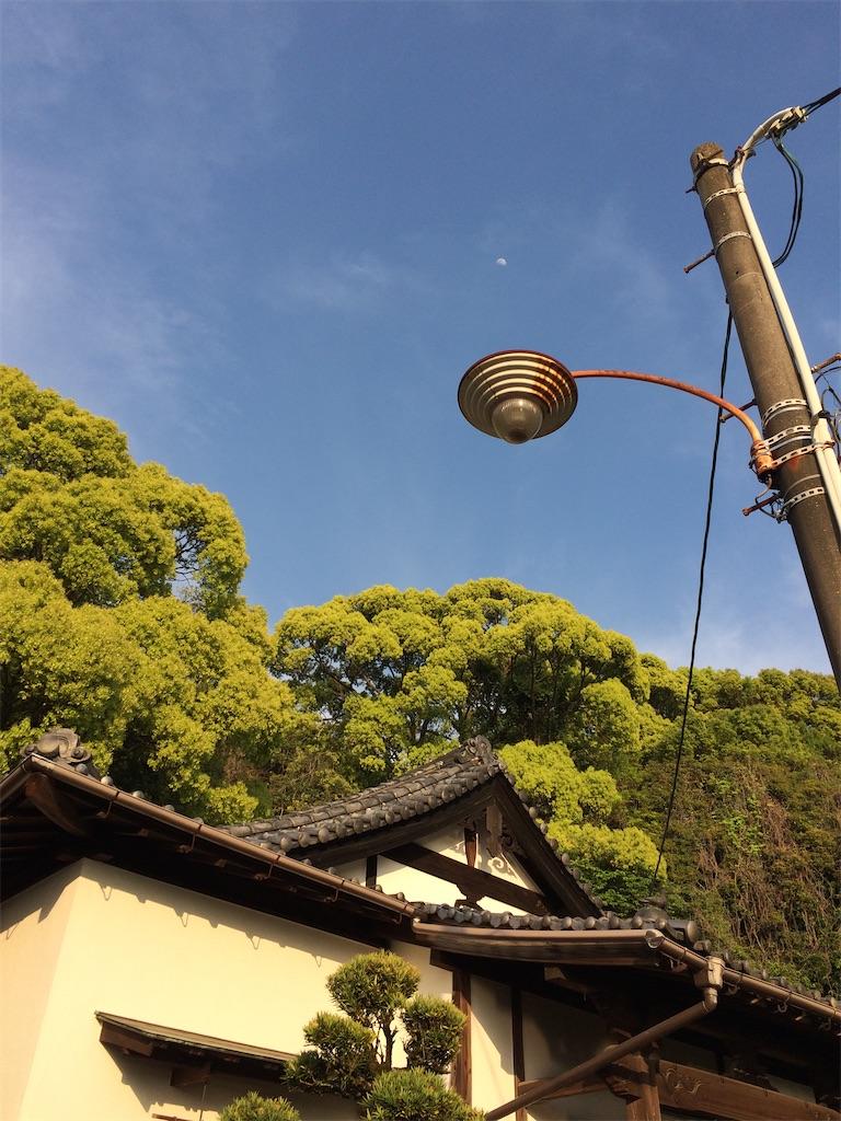f:id:aki_tokitamago:20200621075350j:image