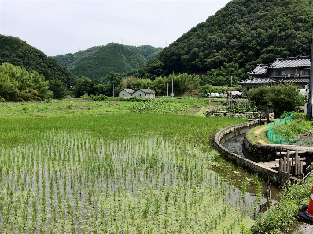 f:id:aki_tokitamago:20200621234001j:image