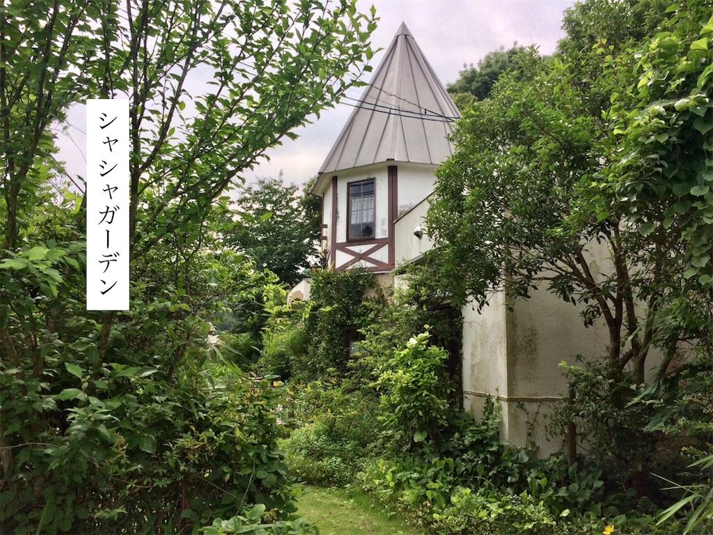 f:id:aki_tokitamago:20200628185300j:image