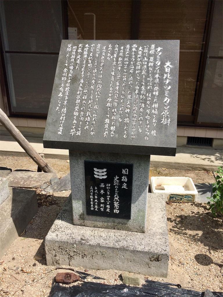 f:id:aki_tokitamago:20200706192452j:image
