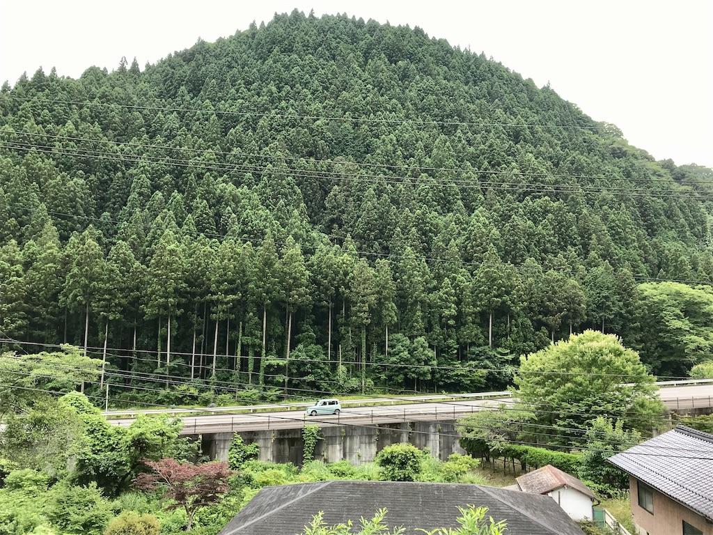 f:id:aki_tokitamago:20200713192106j:image