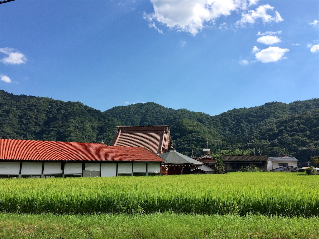 f:id:aki_tokitamago:20200816180742j:image
