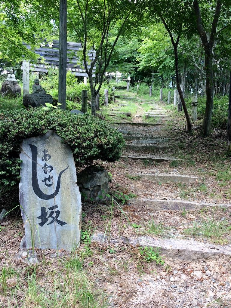 f:id:aki_tokitamago:20200817210556j:image