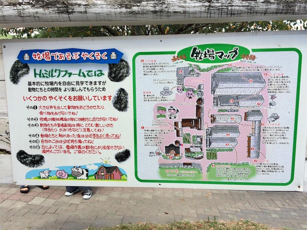 f:id:aki_tokitamago:20200818195819j:image