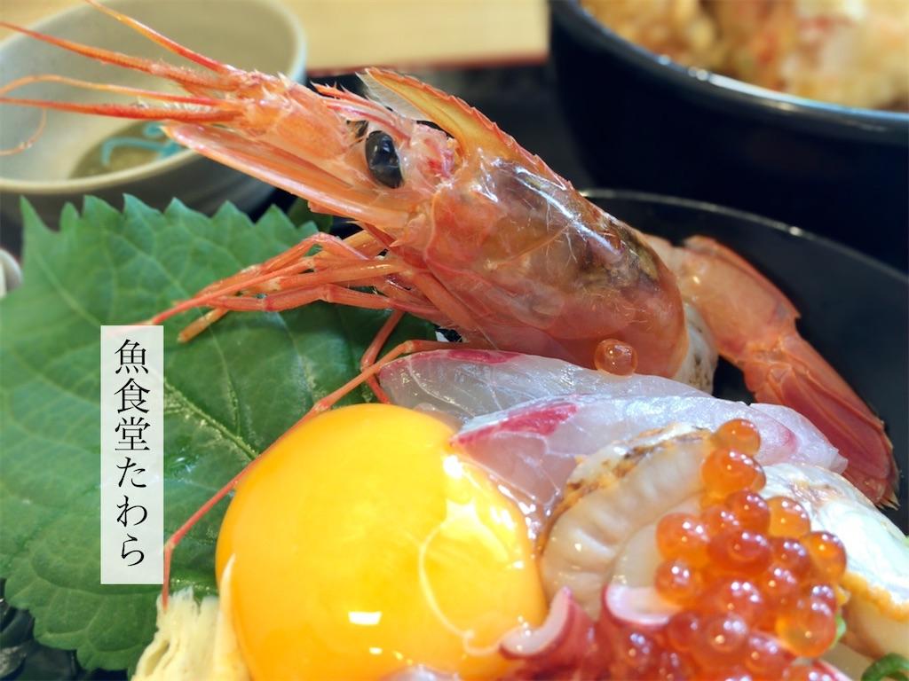 f:id:aki_tokitamago:20200930073416j:image