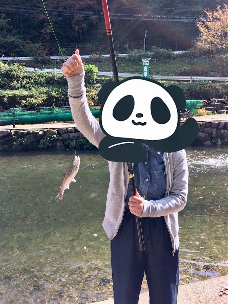 f:id:aki_tokitamago:20201008110920j:image