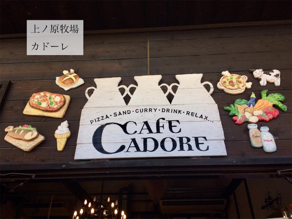 f:id:aki_tokitamago:20201108092518j:image