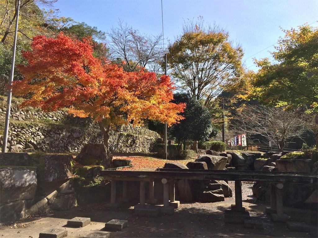 f:id:aki_tokitamago:20201108150349j:image