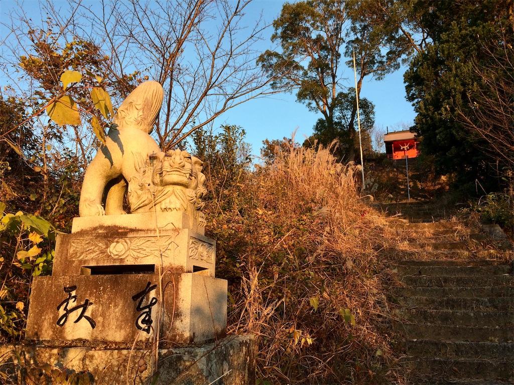 f:id:aki_tokitamago:20201212192753j:image