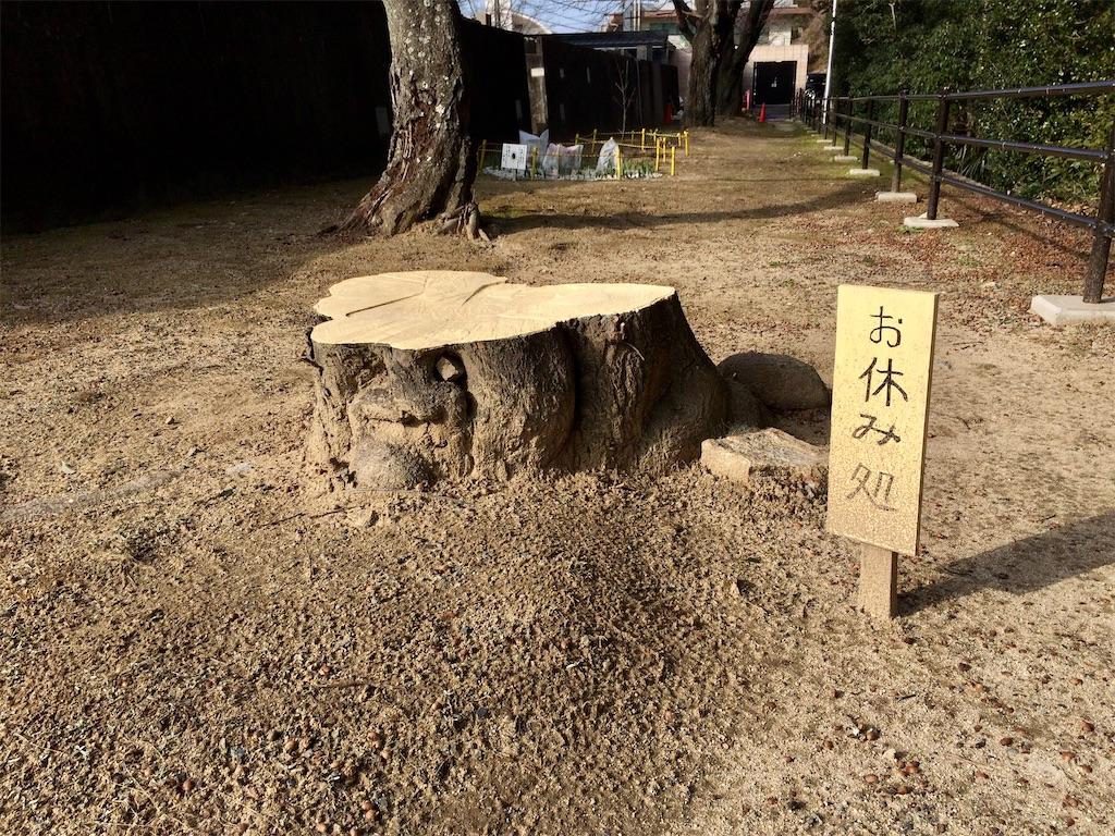 f:id:aki_tokitamago:20210131162645j:image