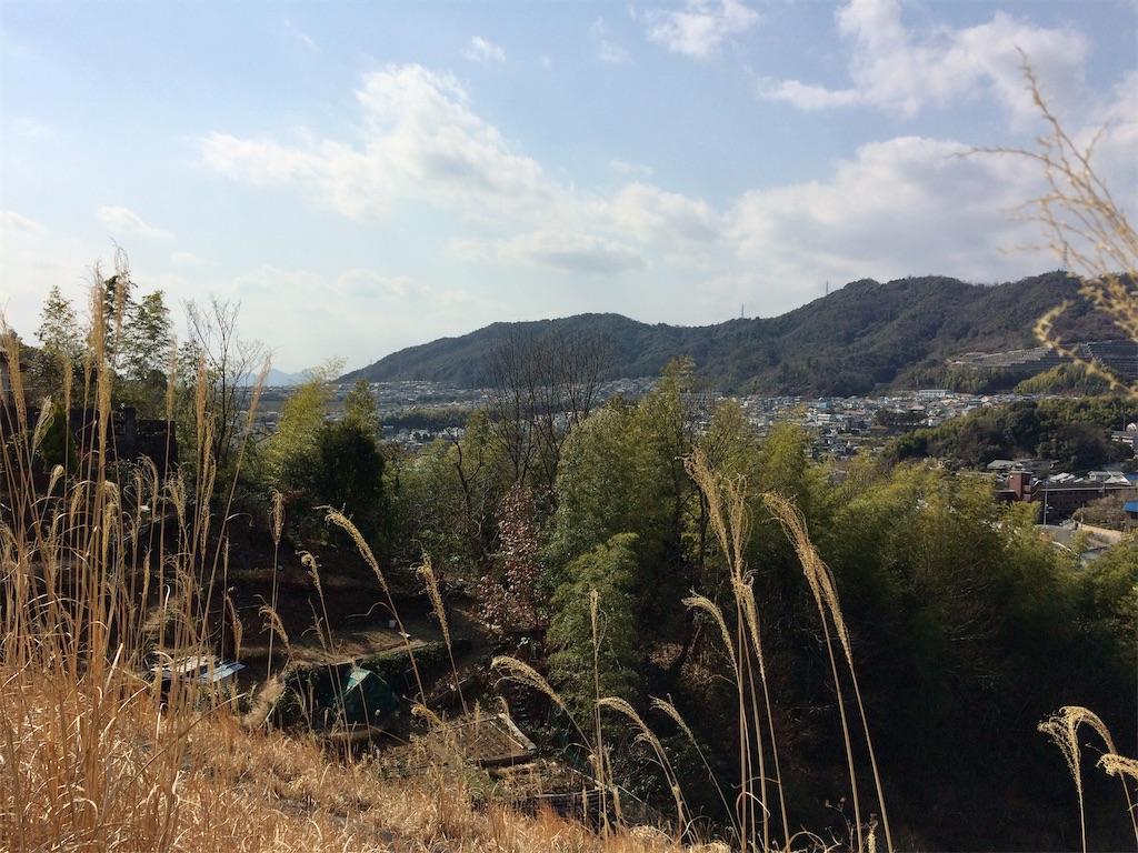 f:id:aki_tokitamago:20210223103414j:image