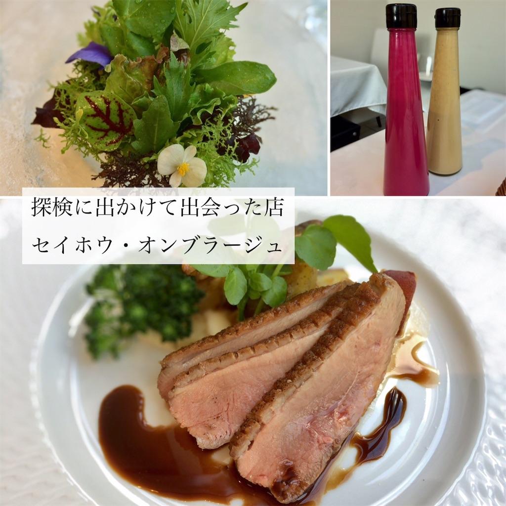 f:id:aki_tokitamago:20210628232501j:image