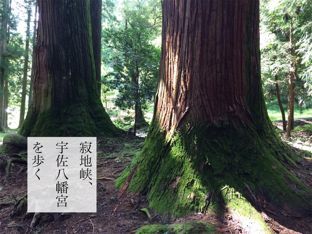 f:id:aki_tokitamago:20211004152619j:image