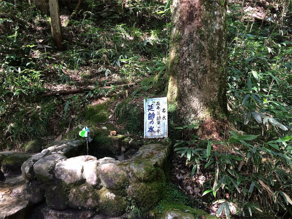 f:id:aki_tokitamago:20211004154625j:image