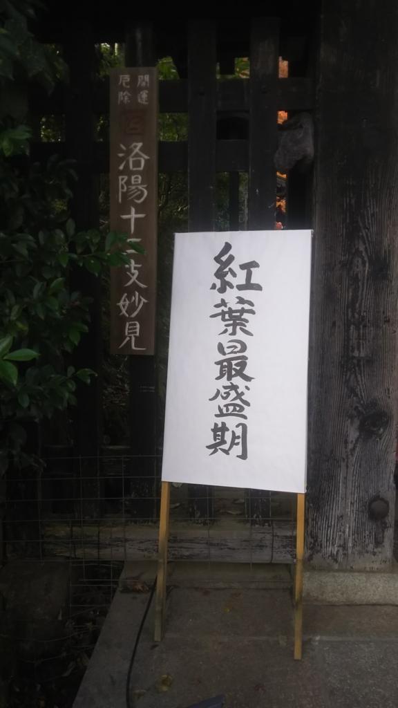 f:id:akiakakaki:20180216173617j:plain