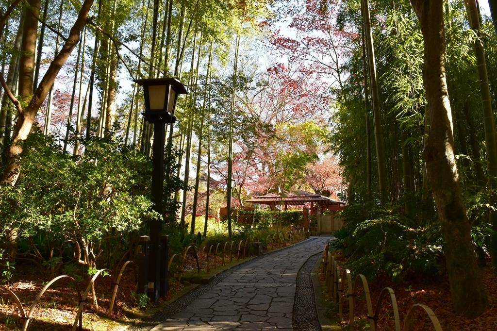 竹林の中間に竹でつくられたベンチ