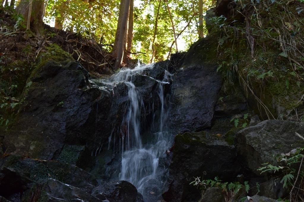 ばんじょうの滝へ続く道