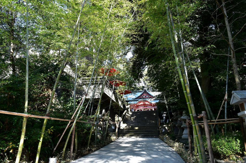 来宮神社の石畳