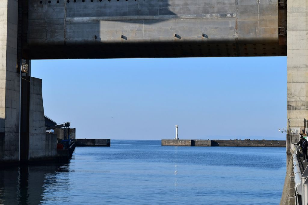 びゅうおの向こうに広がる駿河湾