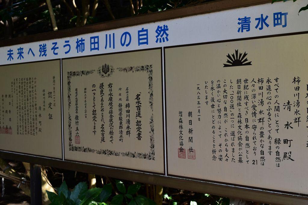 柿田川公園の第1展望台