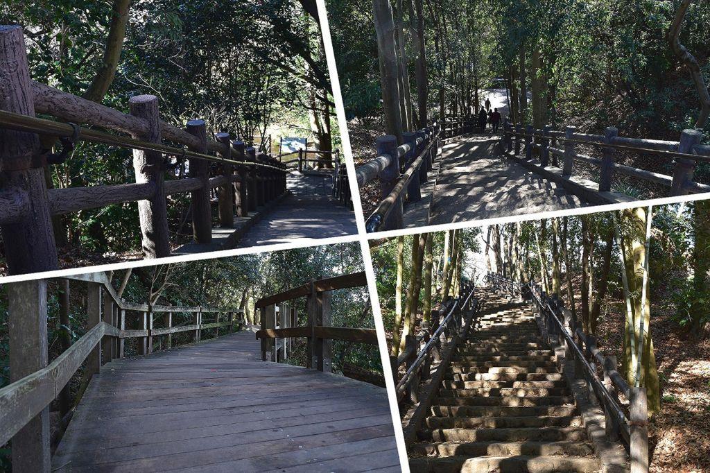 柿田川公園の遊歩道