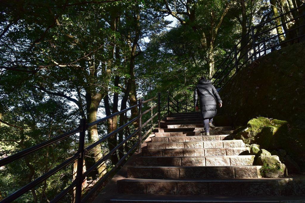 浄蓮の滝の遊歩道