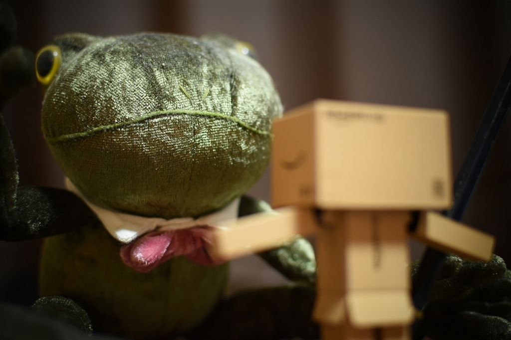 DANBOARD and Frog