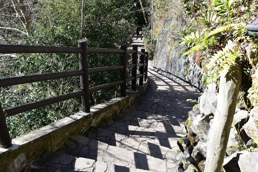 河津七滝めぐり、大滝に向かう道