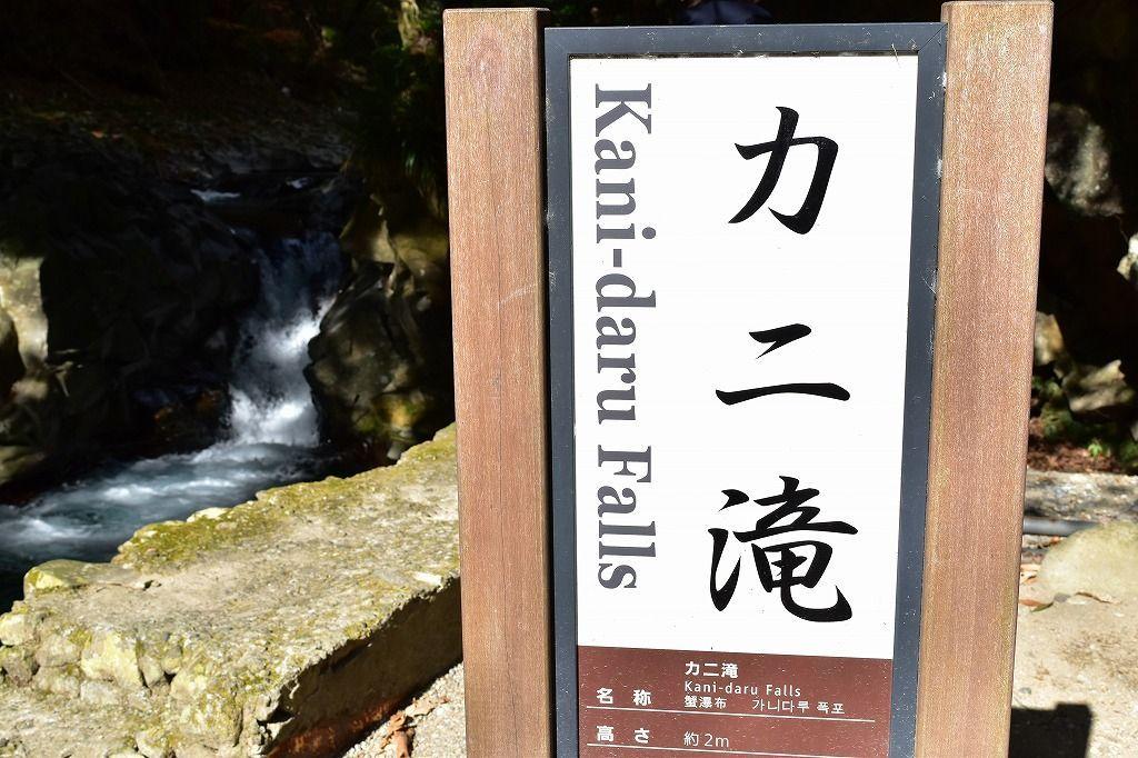 河津七滝のカニ滝