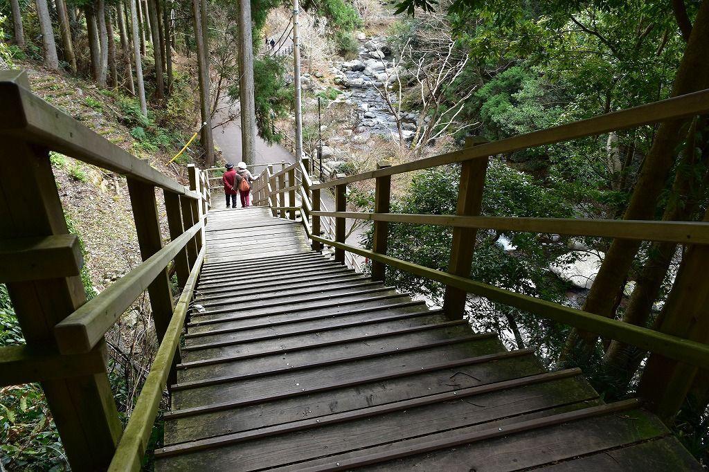 河津七滝散策コース