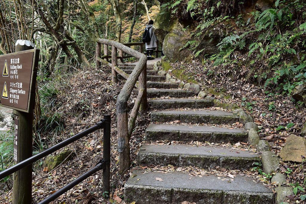河津七滝の散策道