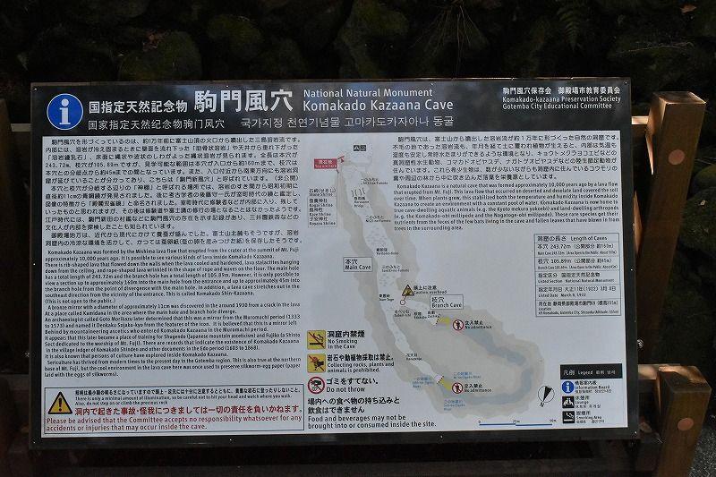 駒門風穴の全体像