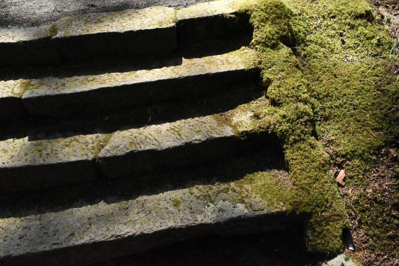 二岡神社の参道