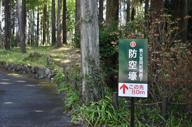 秩父宮記念公園の防空壕