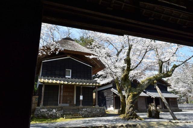 江川邸の西蔵